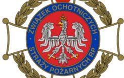Więcej o: Dotacja FU z Zarządu Oddziału Wojewódzkiego ZOSP RP woj. małopolskiego.